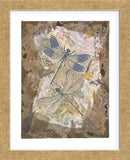 Honeycomb Dragonflies  (Framed) -  Annabel Hewitt - McGaw Graphics
