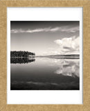 Big Pond  (Framed) -  Andrew Ren - McGaw Graphics