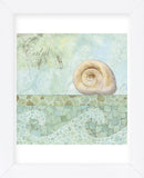 Spa Shells IV (Framed) -  NBL Studio - McGaw Graphics
