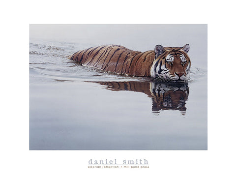 Daniel Smith - Siberian Reflection