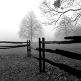 Fence in the Mist -  Harold Silverman - McGaw Graphics
