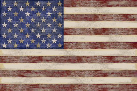 U.S. Flag -  Sparx Studio - McGaw Graphics