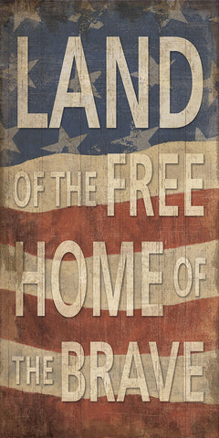 Land of the Free Home of the Brave -  Sparx Studio - McGaw Graphics