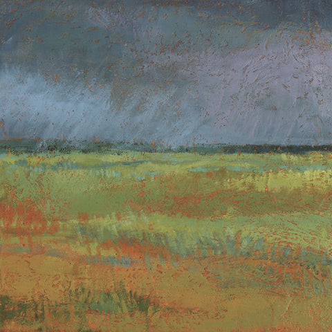 Jeannie Sellmer - Rain Passing Through