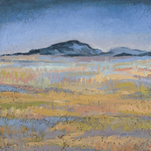 Jeannie Sellmer - Field in Magical Light