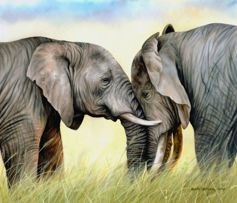 African Elephants -  Sarah Stribbling - McGaw Graphics