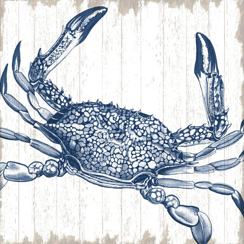 Sparx Studio - Seaside Crab