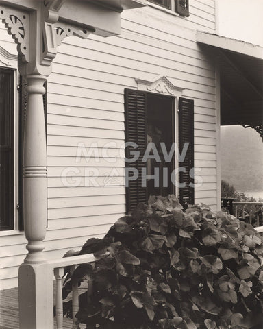 House and Grape Leaves, 1934 -  Alfred Stieglitz - McGaw Graphics