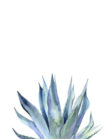 Agave II -  Ann Solo - McGaw Graphics