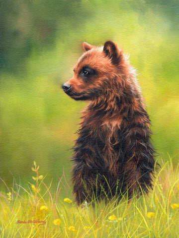 Sarah Stribbling - Brown Bear Cub