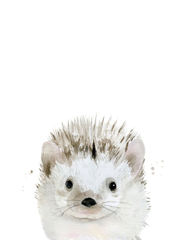Hedgehog -  Ann Solo - McGaw Graphics