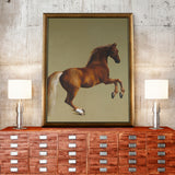 Whistlejacket -  George Stubbs - McGaw Graphics