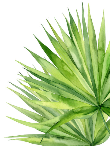 Exotic Leaves -  Ann Solo - McGaw Graphics