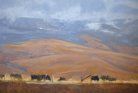 Todd Telander - North Powder Cows