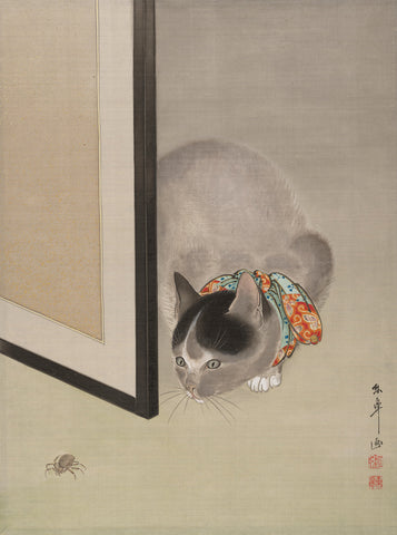 Cat watching a Spider, 1888-92 -  Oide Toko - McGaw Graphics