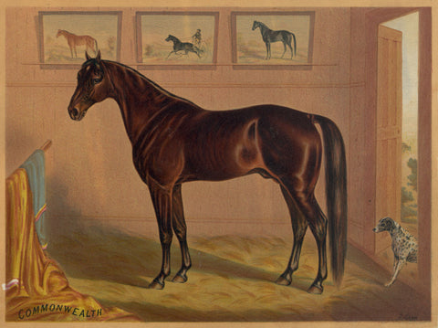 America's Renowned Stallions, c. 1876 IV -  Vintage Reproduction - McGaw Graphics