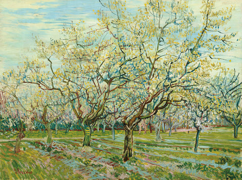 Vincent van Gogh - The White Orchard, 1888