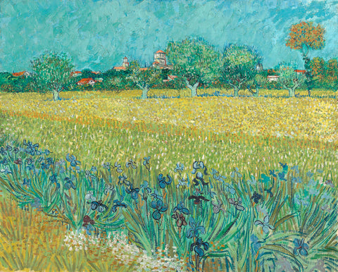 Field with Flowers Near Arles, 1888 -  Vincent van Gogh - McGaw Graphics