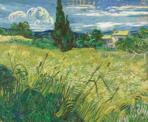 Vincent van Gogh - Green Field, 1889