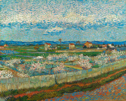Vincent van Gogh - Peach Blossoms in the Crau