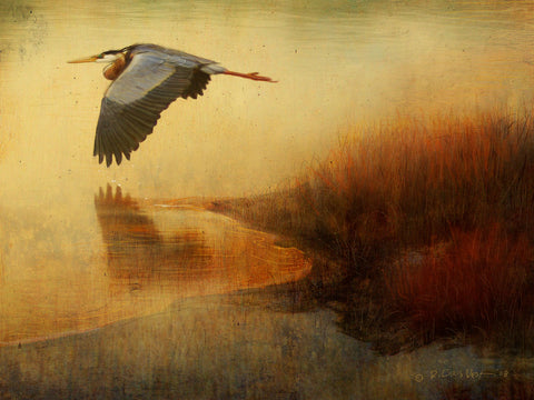 Chris Vest - Orange Colorado River Heron