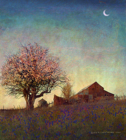Barn on Hill with Moon -  Chris Vest - McGaw Graphics