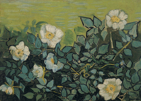 Wild Roses, 1890 -  Vincent van Gogh - McGaw Graphics
