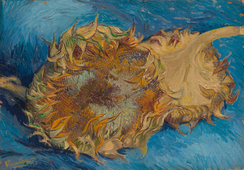 Sunflowers,1887