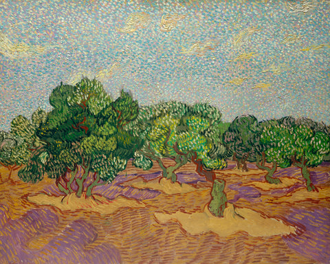 Olive Trees, 1889 -  Vincent van Gogh - McGaw Graphics