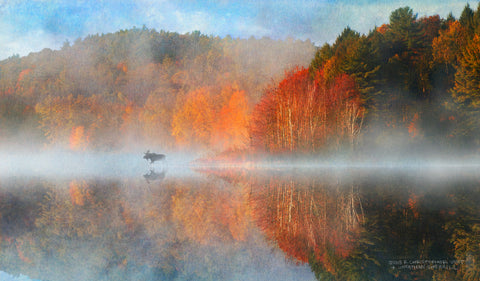 Leverett Pond Sunrise -  Chris Vest - McGaw Graphics