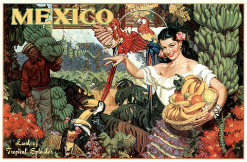 Mexico - Bananas -  Vintage Sophie - McGaw Graphics
