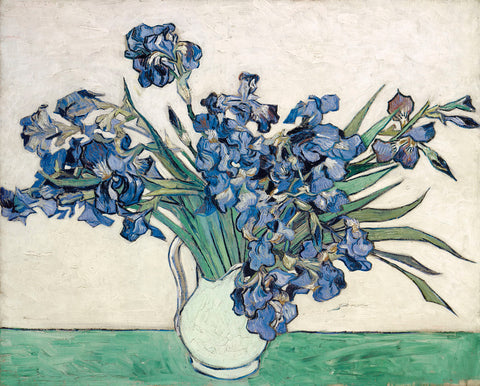 Irises -  Vincent van Gogh - McGaw Graphics