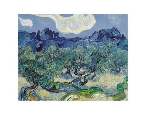 The Olive Trees, 1889 -  Vincent van Gogh - McGaw Graphics