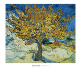The Mulberry Tree, 1889 -  Vincent van Gogh - McGaw Graphics
