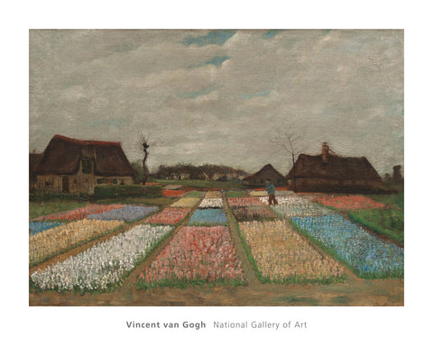 Flower Beds in Holland, c. 1883 -  Vincent van Gogh - McGaw Graphics