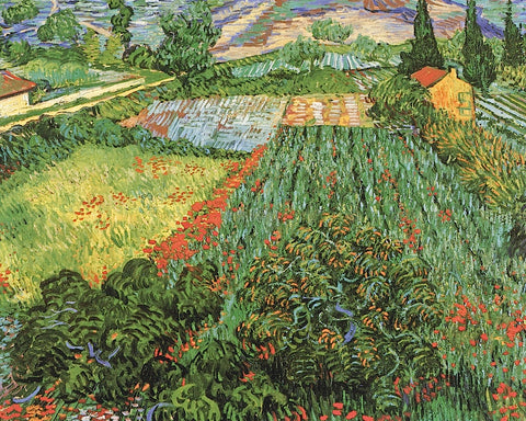 Field of Poppies, Saint-Remy, c. 1889 -  Vincent van Gogh - McGaw Graphics