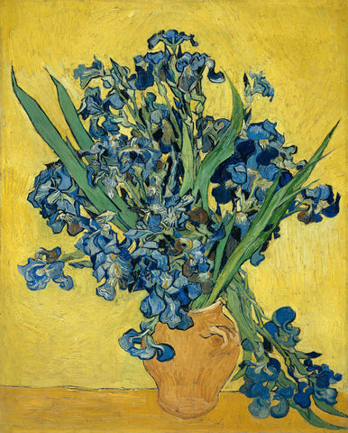 Irises in Vase -  Vincent van Gogh - McGaw Graphics