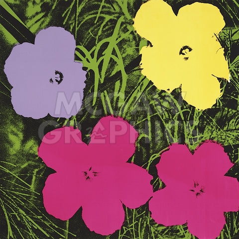Andy Warhol - Flowers, 1970 (1 purple, 1 yellow, 2 pink)