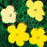 Flowers, 1970 (4 yellow)