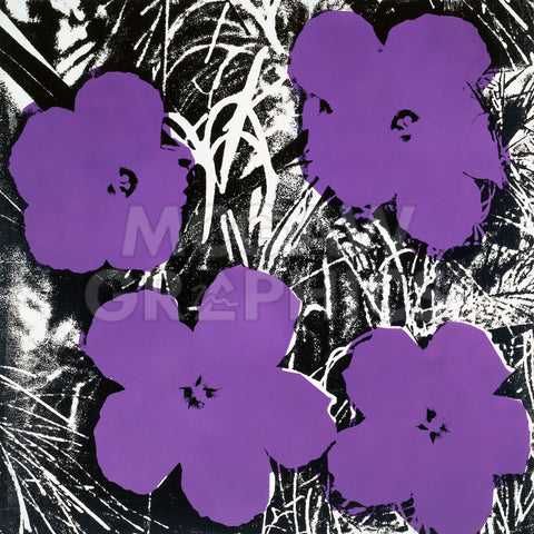 Andy Warhol - Flowers, c.1965 (4 purple)