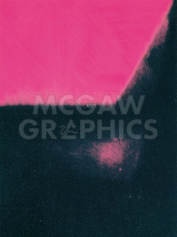 Shadows I, 1979 (black and pink) -  Andy Warhol - McGaw Graphics