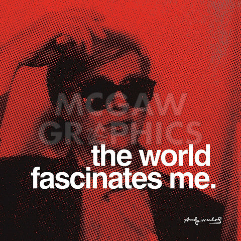 Andy Warhol - The world fascinates me