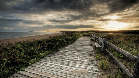 The Boardwalk -  Eric Wood - McGaw Graphics