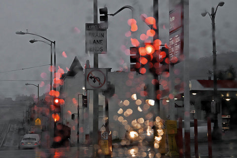 SF Early and Wet -  David Lorenz Winston - McGaw Graphics