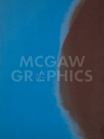 Shadows II, 1979 (blue) -  Andy Warhol - McGaw Graphics