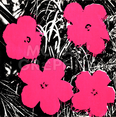 Flowers, 1965 (hot pink) -  Andy Warhol - McGaw Graphics