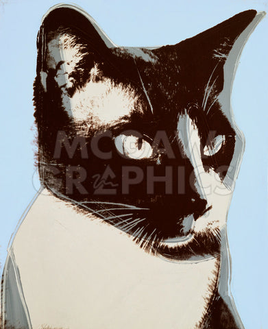 Andy Warhol - Cats and Dogs (Broadway), 1976