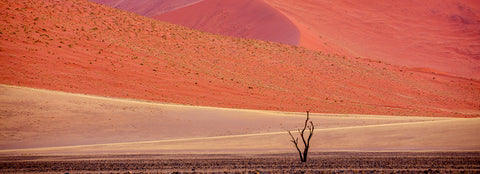 Sossusvlei, Namib-Naukluft National Park, Namibia -  Art Wolfe - McGaw Graphics