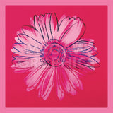 Daisy, c. 1982 (crimson and pink) -  Andy Warhol - McGaw Graphics