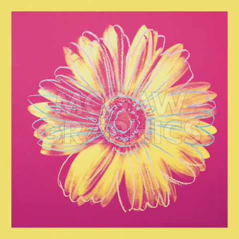 Daisy, c.1982 (fuchsia & yellow) -  Andy Warhol - McGaw Graphics
